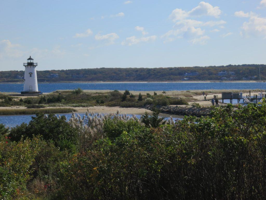 Lighthouse, vegetation and ocean